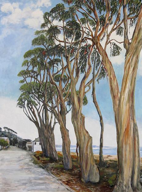 Stand of Eucalyptus Trees, La Sleva Beach